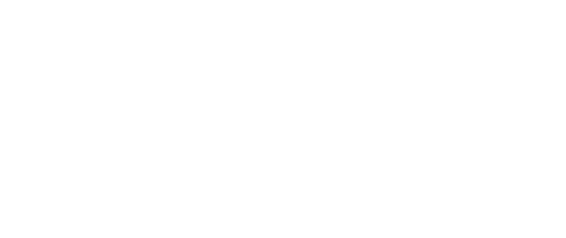 Dfestival footer Logo